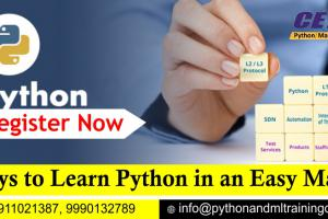 5 Ways to Learn Python in an Easy Manner