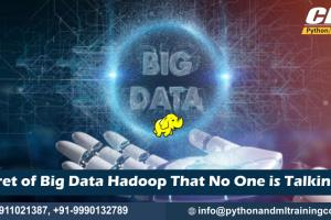 Big Data Hadoop Training Noida