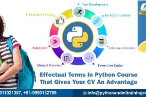 Effectual Terms In Python Course That Gives Your CV An Advantage